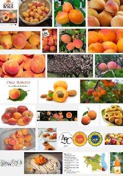 Abricots rouges du Roussillon (aoc)